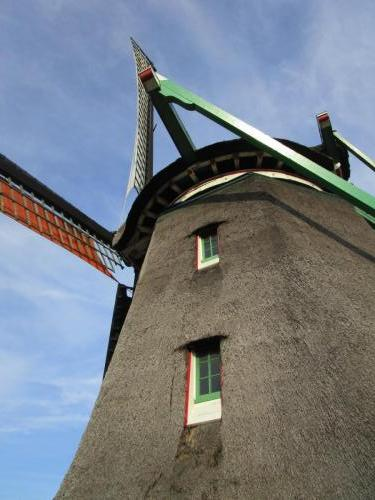 Windmill with cool mossy woody stuff