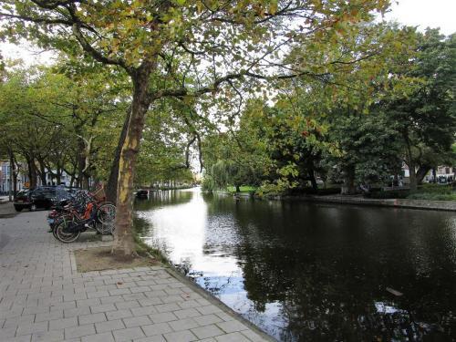 My grand 3.5 mile walk mostly along Mauritskade