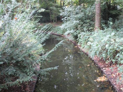 Grosse Tiergarten